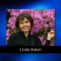 Artwork for 115 Soul Contracts and How They Affect Your Life with Linda Baker