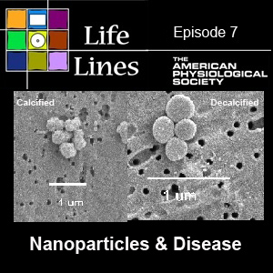 Episode 7: Nanoparticles and Disease