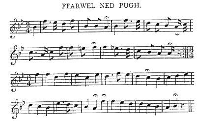 Ffarwel Ned Hugh