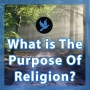 Artwork for Walk 8 - What is The Purpose of Religion?