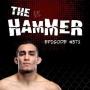 Artwork for The Hammer MMA Radio - Episode 371