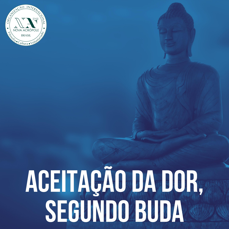 A Aceitação da Dor segundo Buda show art