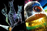 Alcohol y drogas: Conversaciones Reales en Ingles