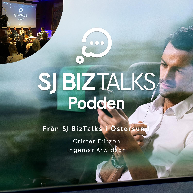 25. Från SJ Biztalks Event i Östersund 12mars Del 1