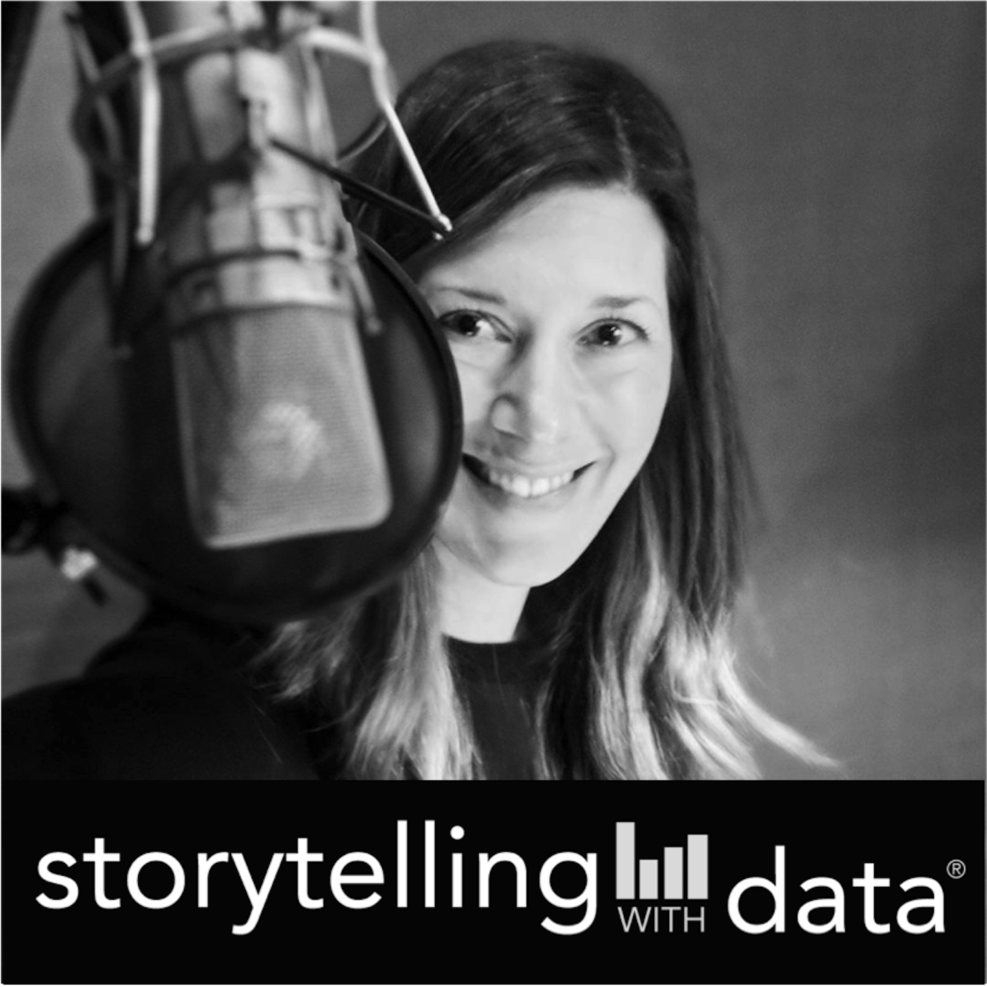 storytelling with data podcast show art