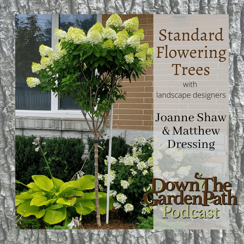 Artwork for Standard Flowering Trees