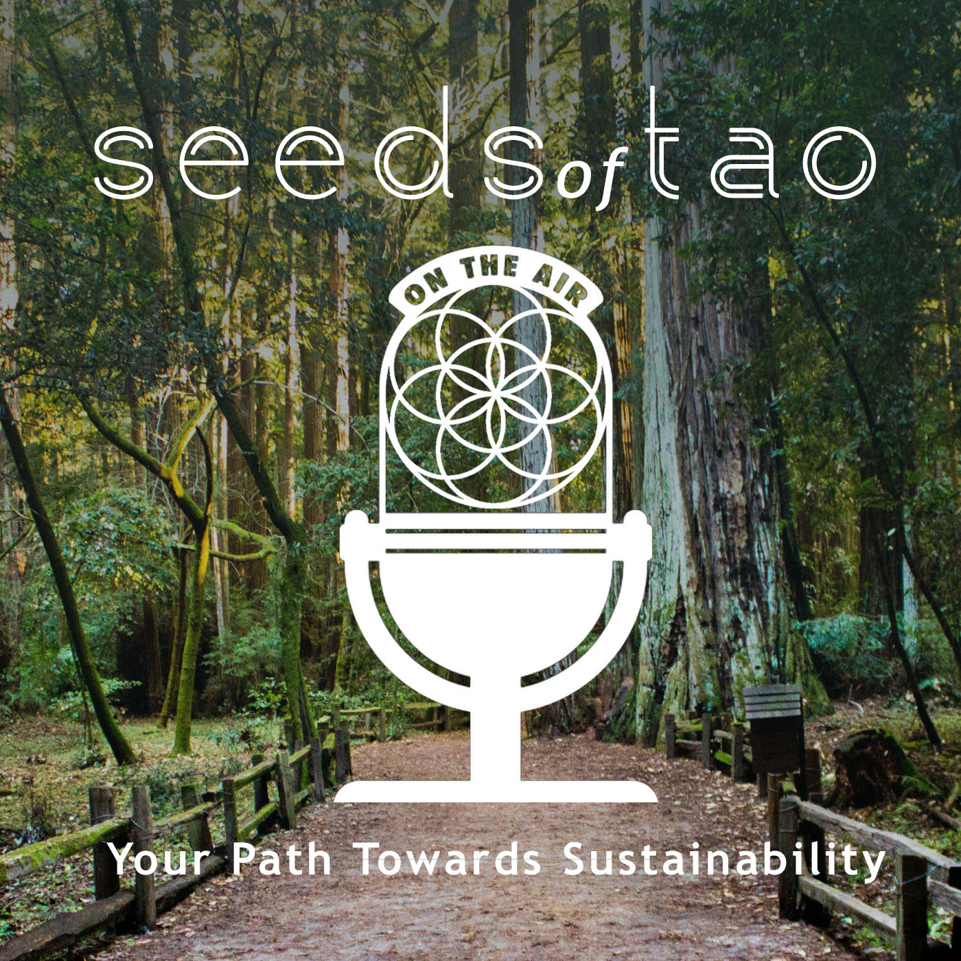 Artwork for 001: Welcome and Introduction to Seeds of Tao