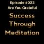Artwork for Episode #023 - Are You Grateful?