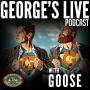 Artwork for #22 - Goose