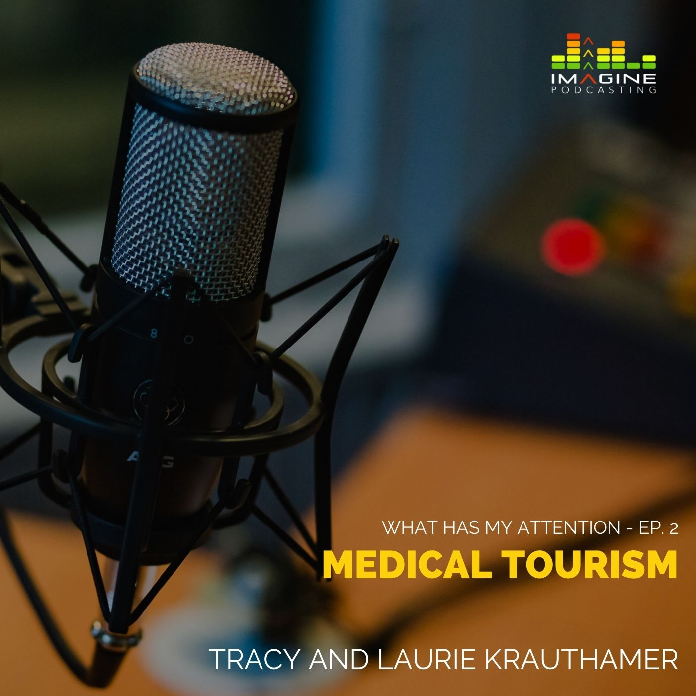 Ep. 2 Medical Tourism with Tracy and Laurie Krauthamer