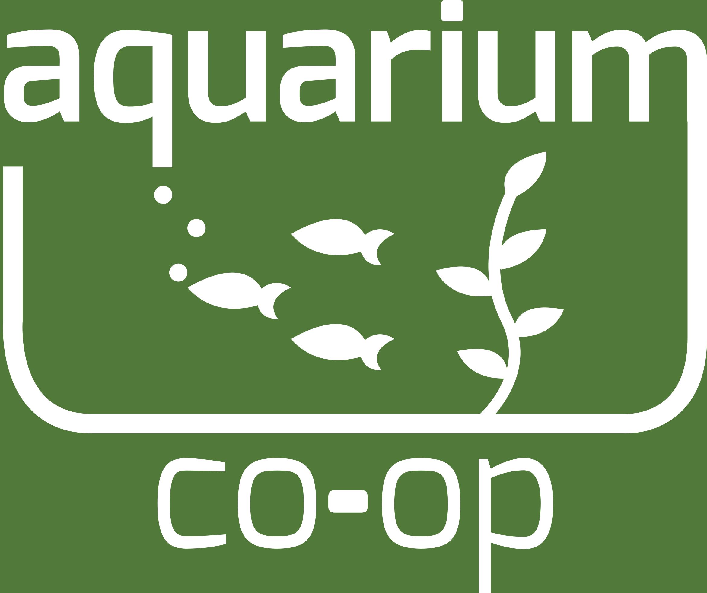 Real Fish Talk by Aquarium Co Op Real Fish Talk 1 Cheap Fish Tanks