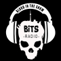 Artwork for BITS Radio Episode 28 - Diana Cofini & Steven Morana, Chris Green, Alysa King and Art Hindle & Khizer Khani and Andrew Ravindran