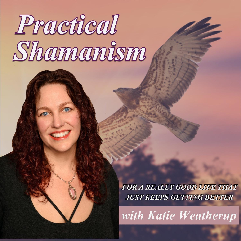 Practical Shamanism show art