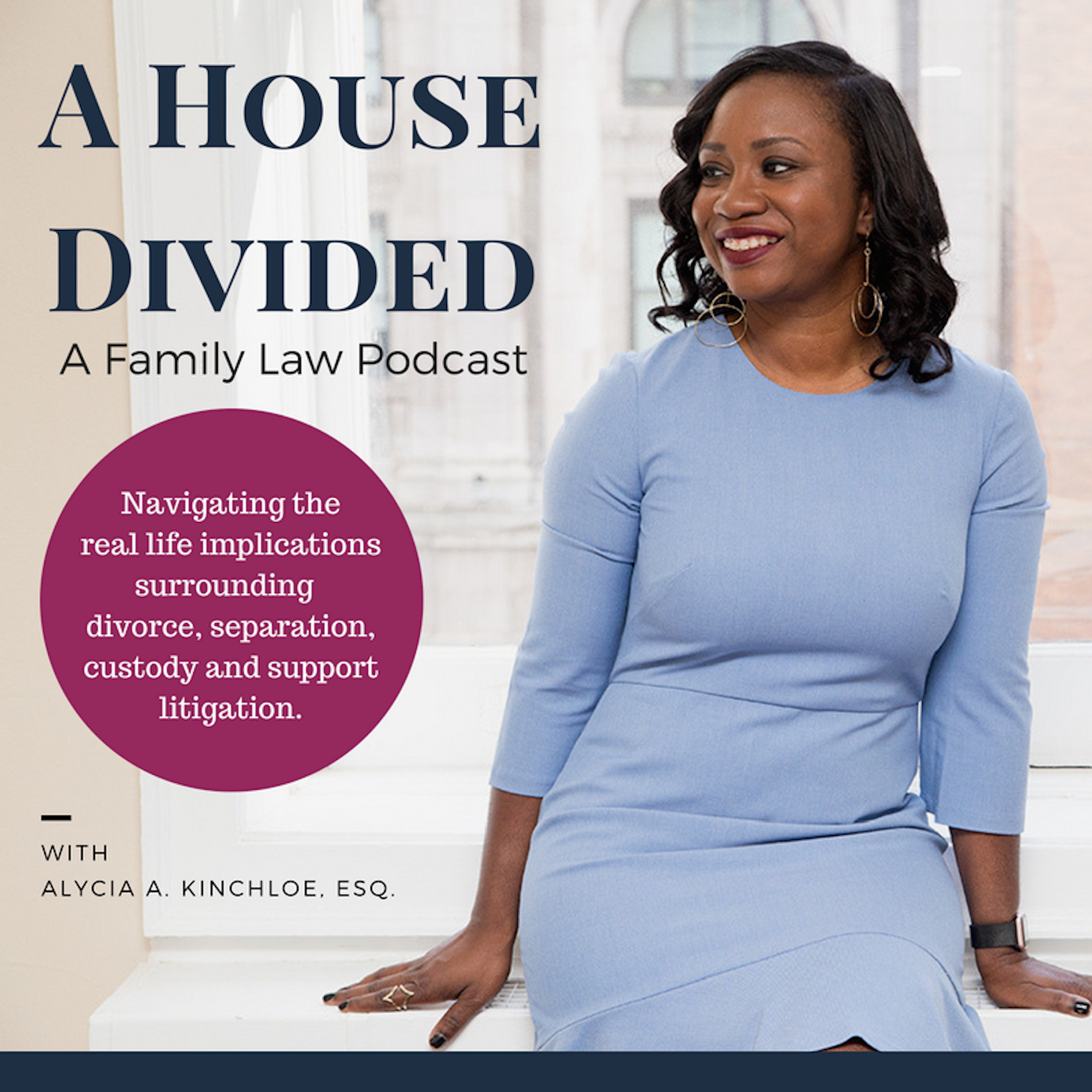 A House Divided: Practical Tips for Family Law Issues show art