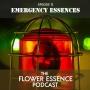 Artwork for FEP12 Emergency Essences