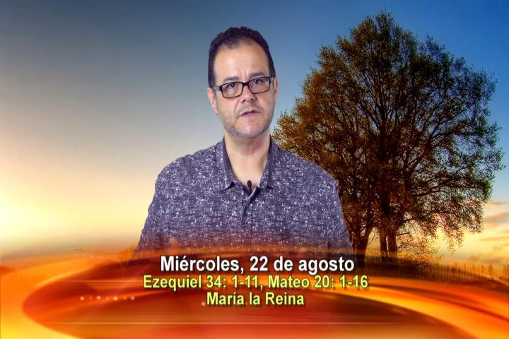 Artwork for Dios te Habla con Vilson Monteiro, sacerdote SVD , Tema el hoy: María la Reina