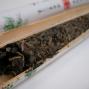 Artwork for Bamboo Pu'er, Beyond the Novelty