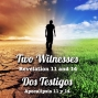 Artwork for 8 - Two Witnesses | Dos Testigos