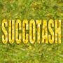 Artwork for Succotash (Dress Rehearsal #1)