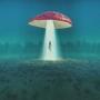 Artwork for CST #345: Mushroom Trip to Delaware