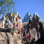 Expedition Everest Meanderings - An Encore