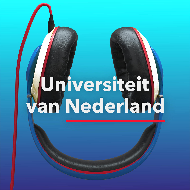 De Universiteit van Nederland Podcast show art