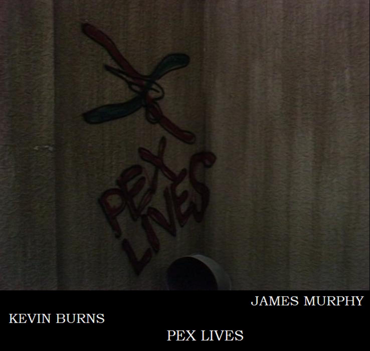 Pex Lives: A Doctor Who Podcast show art