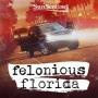 Artwork for Bonus - Felonious Florida