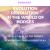Evolution Revolution In The World of Horses show art