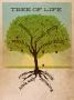 """Artwork for """"Tree of Life: The Forest""""- Rev. Ben Crismon"""