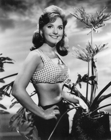 What Would Mary Ann Do? (Dawn Wells Guide to Life)