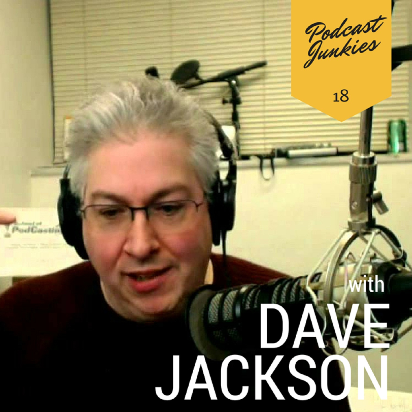 018 Dave Jackson | The Importance Of Providing Your Own Unique Voice