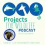 Artwork for Episode 007 - Dr. Jennifer Lavers finds plastic on the world's most remote islands