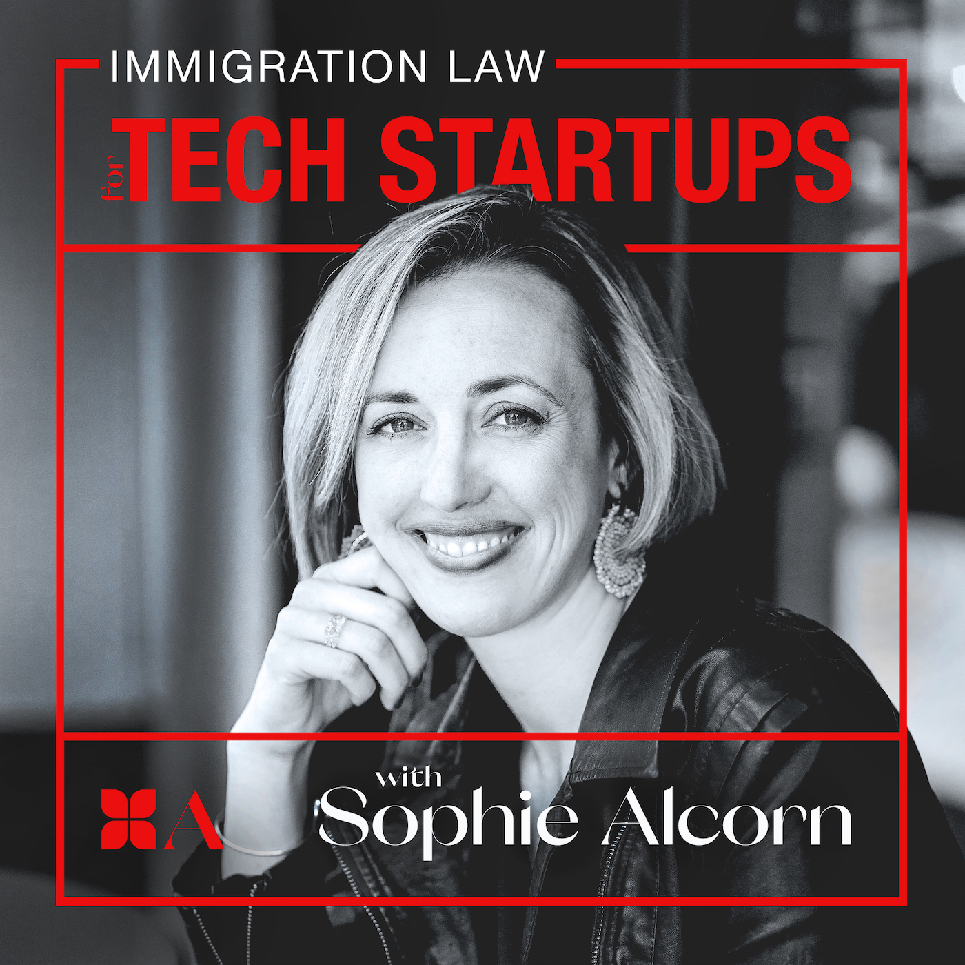 Immigration Law for Tech Startups show art
