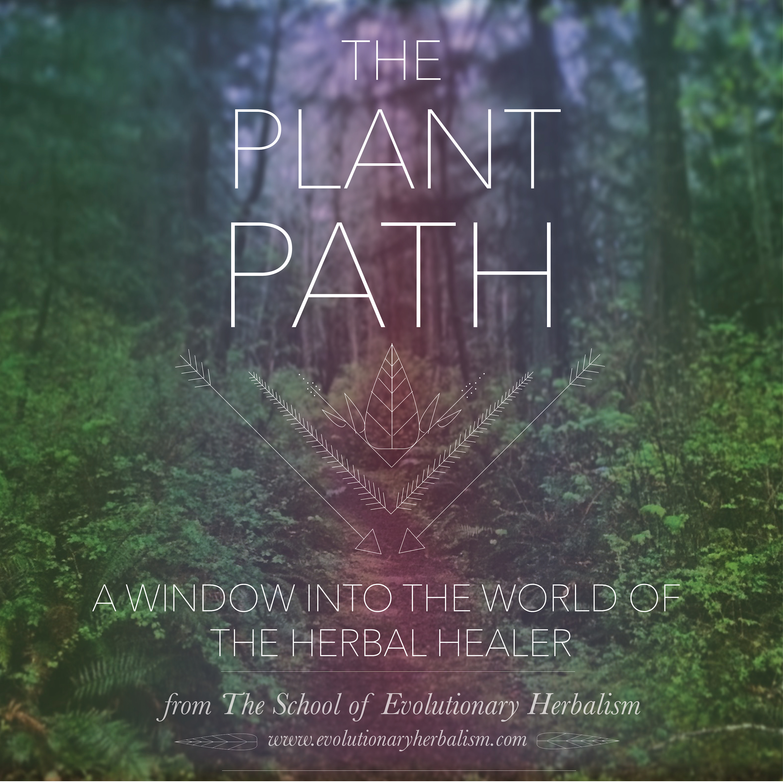 The Plant Path show art