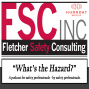 Artwork for What's the Hazard? Industrial Hygiene – Just do it!
