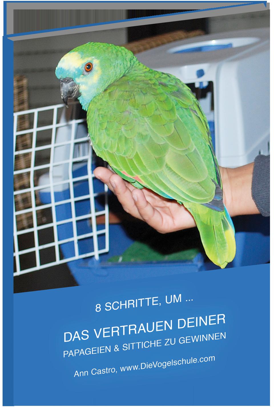 8 Schritte, um das Vertrauen deiner Papageien & Sittiche zu gewinnen - cover