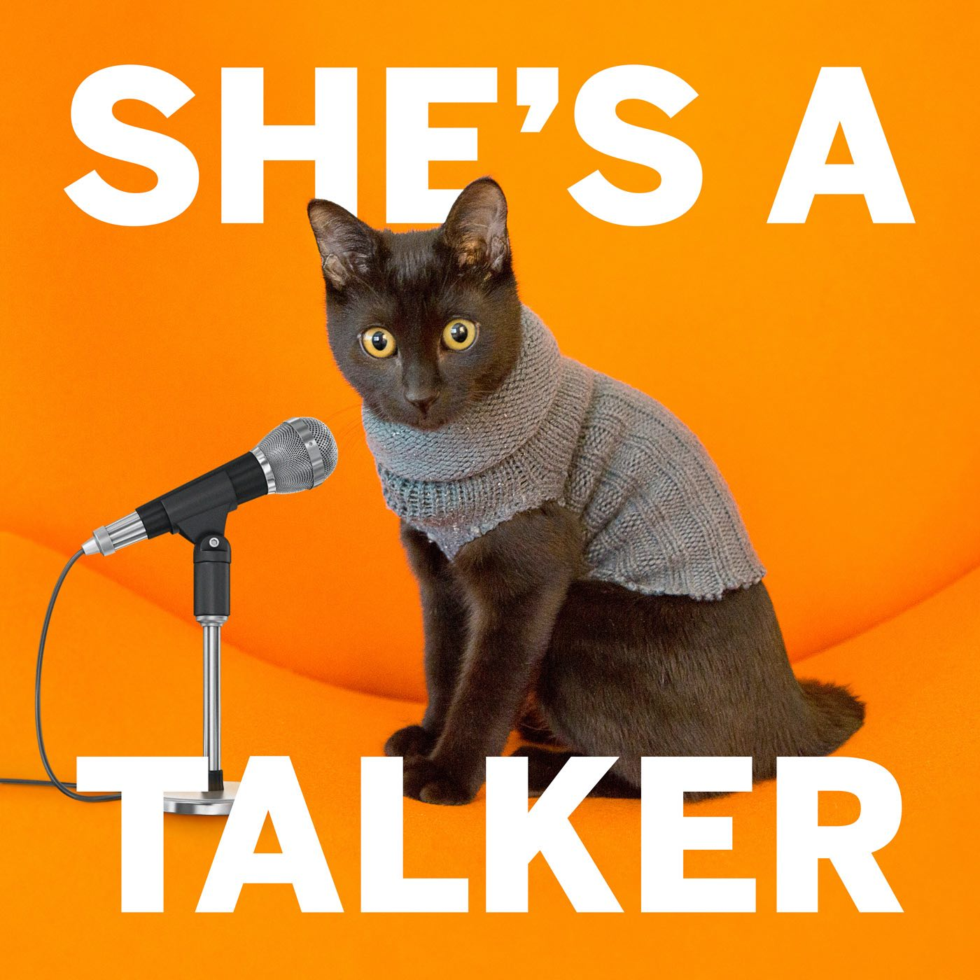 She's A Talker show art