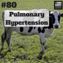 Artwork for #80: Pulmonary hypertension, freeways, and cows in heart failure