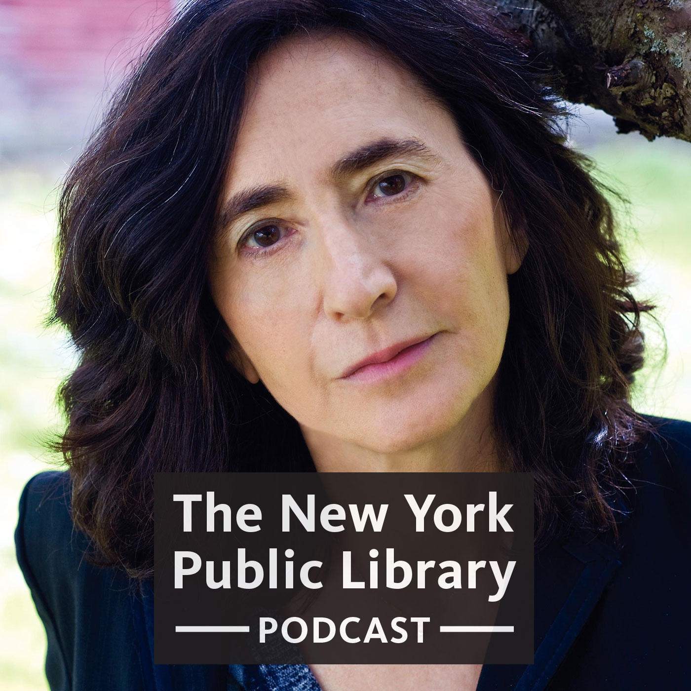Francine Prose on YouTube, Sentences, & War