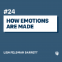 Artwork for 24: How Emotions Are Made