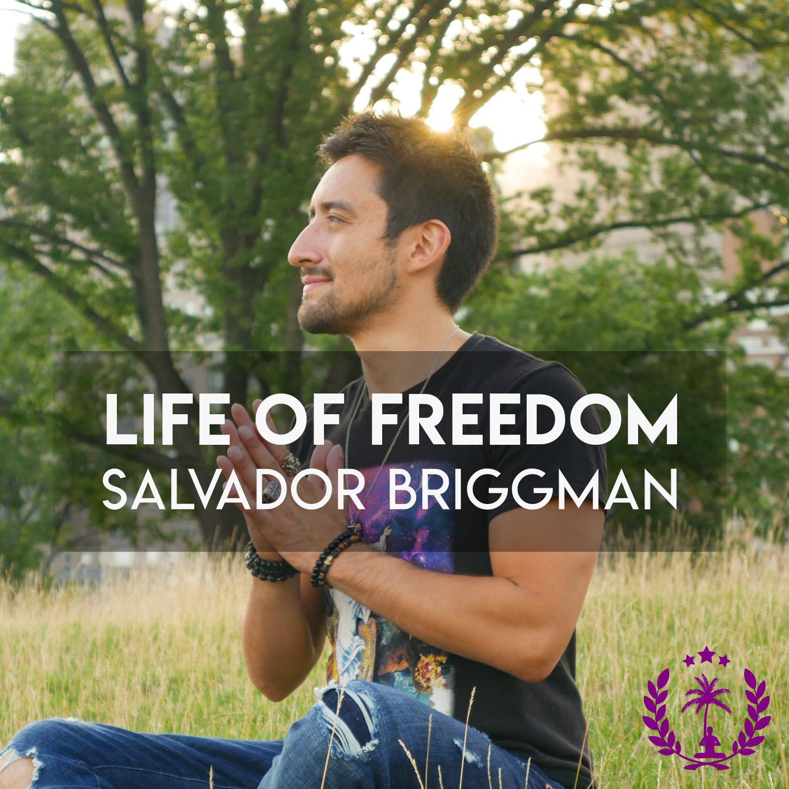 Spiritual Development: Mindfulness, Consciousness, Meditation | Life of Freedom show art