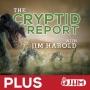 Artwork for Secretly Seeking Sasquatch - Cryptid Report 38