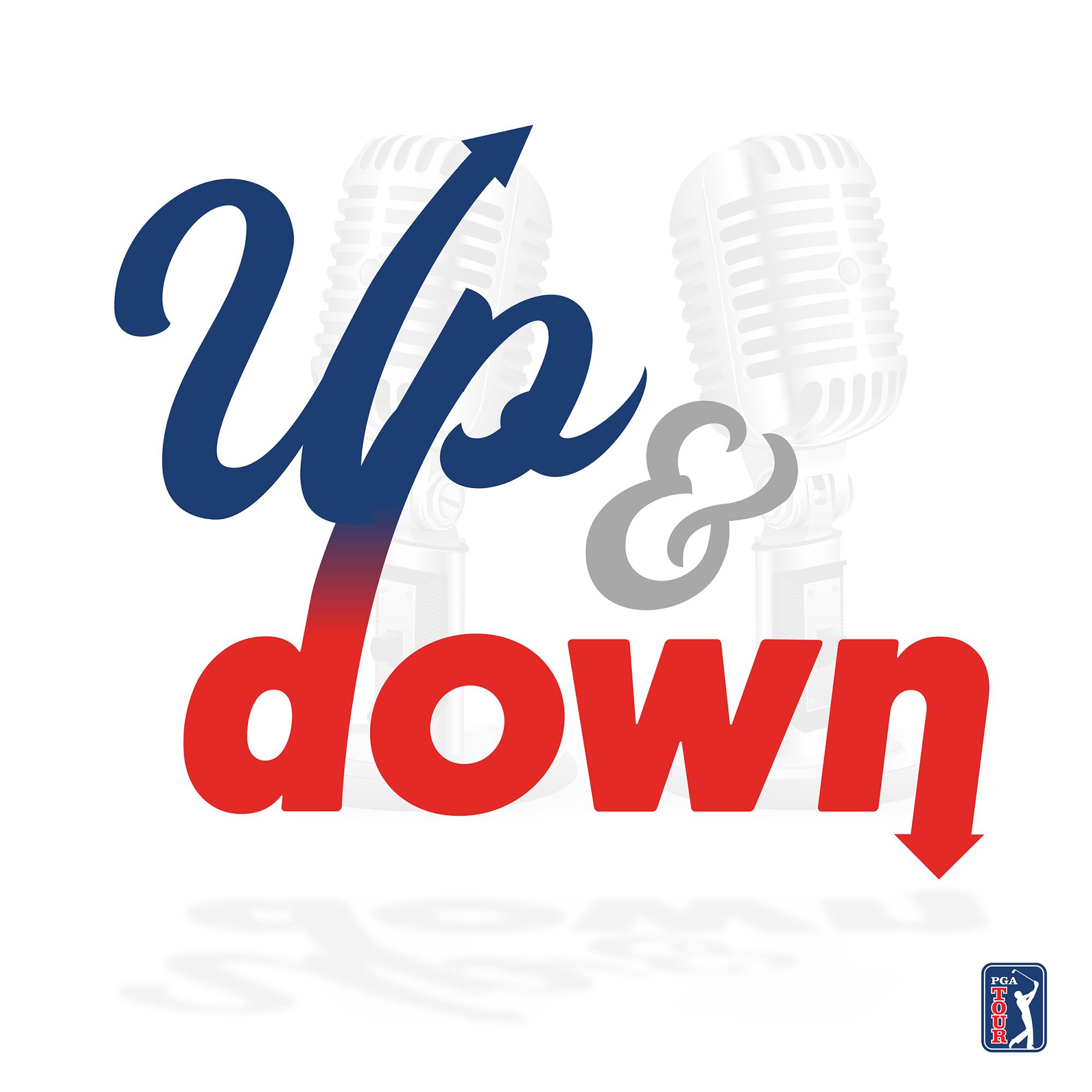 Up & Down show art
