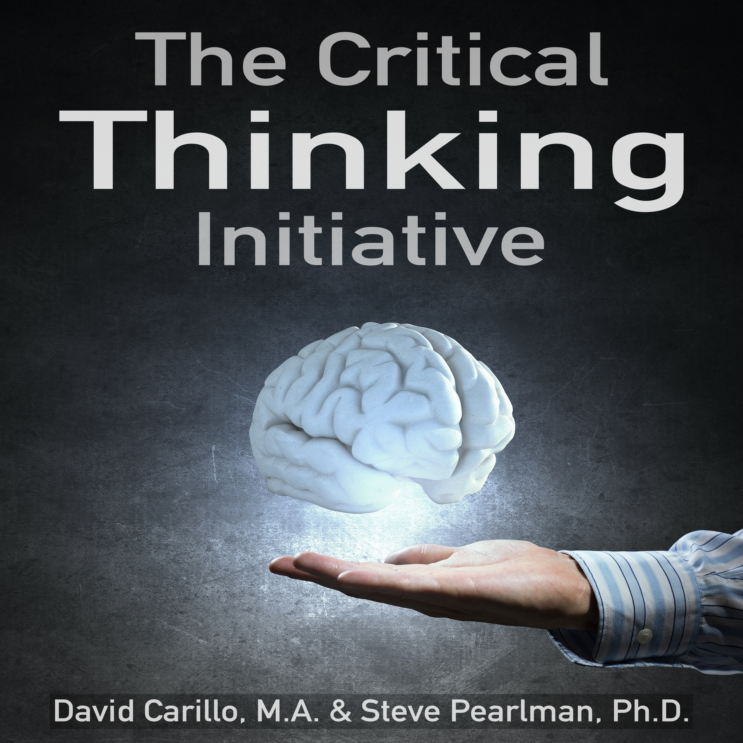 The Critical Thinking Initiative show art