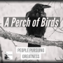 Artwork for 08 - A Perch of Birds - Mr. Jason E. Hill