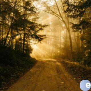 The Path Towards God