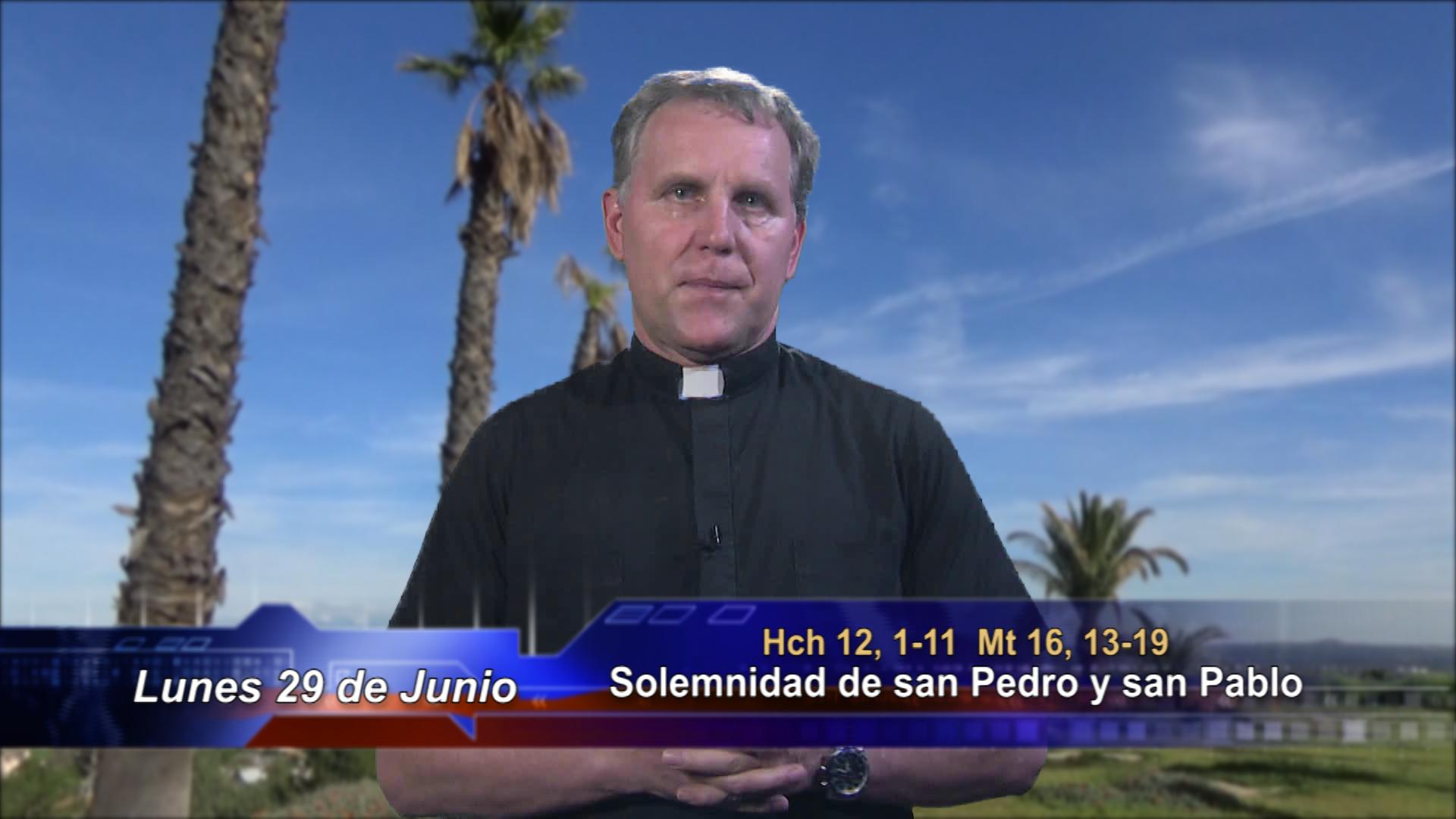Artwork for Dios te Habla con Fr. Pavol Sochulak, SVD;