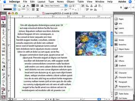 Transforming shapes in InDesign CS3