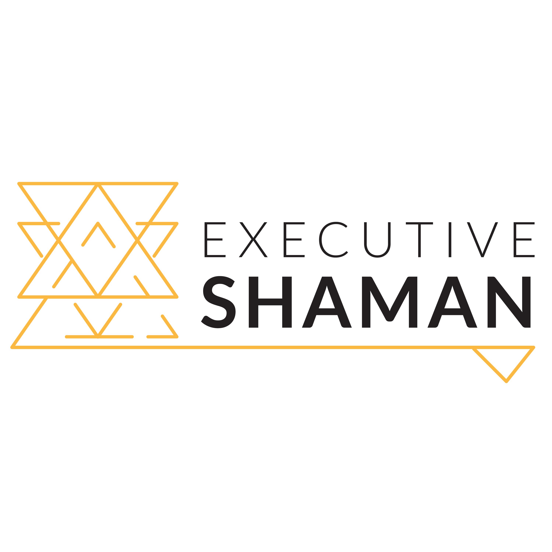 Executive Shaman show art
